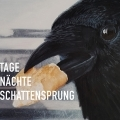 Reinhard Ader - Tage Nächte Schattensprung