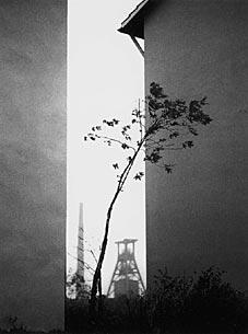 Horst Lang